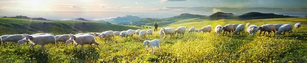 psalm-23-1-the-lord-is-my-shepherd